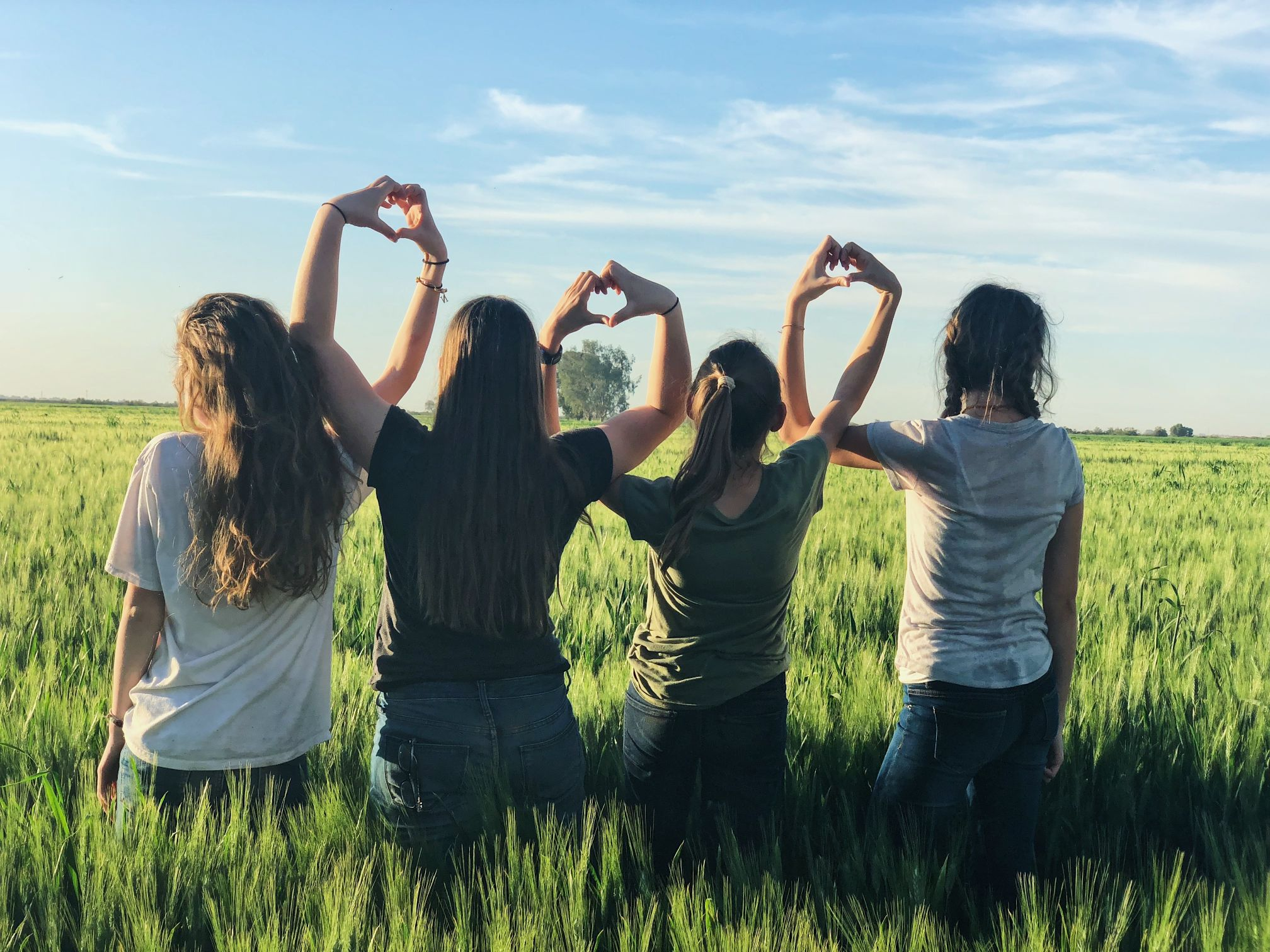 Support Systems for Addiction Recovery